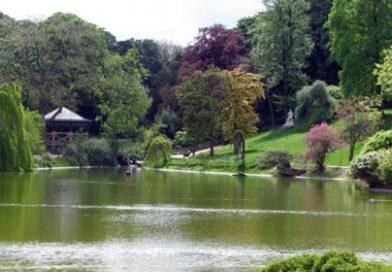 C.O. au parc Montsouris